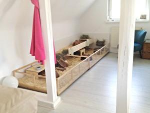 gehege 2. Black Bedroom Furniture Sets. Home Design Ideas